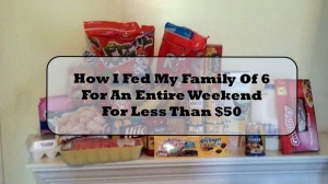 How I Fed My Family Of 6 For A Entire Weekend For Less Than $50