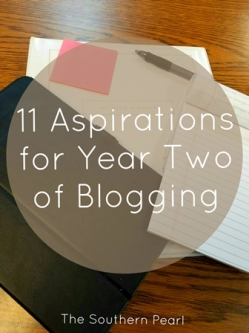 11 Aspirations for Year Two of Blogging